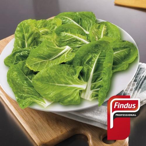 Acelgas hoja Miniporción 15g 1kg Findus