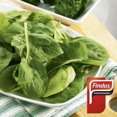 Espinaca hoja Miniporción 50g 2kg Findus